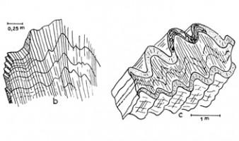 Les plissements hercyniens dans le Canigou, Pyrénées orientales (Guitard, 1960, 1967)
