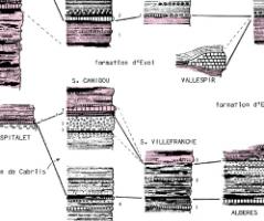 Les Groupes de Canaveilles et de Jujols («Paléozoïque inférieur») des Pyrénées orientales. Arguments en faveur de l'âge essentiellement cambrien de ces séries