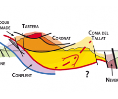 Notice explicative de la carte géologique à 1/25 000 du Synclinal de Villefranche-de-Conflent entre jujols et Nohèdes (massif du Coronat, Pyrénées-Orientales, France) (Laumonier, 2016)
